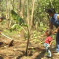 Elsy lvarez and Mara Menjivar  with her young daughter  planting plantain seedlings in a clearing in the forest. Credit: Claudia valos/IPS