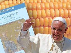 Papst-Umwelt